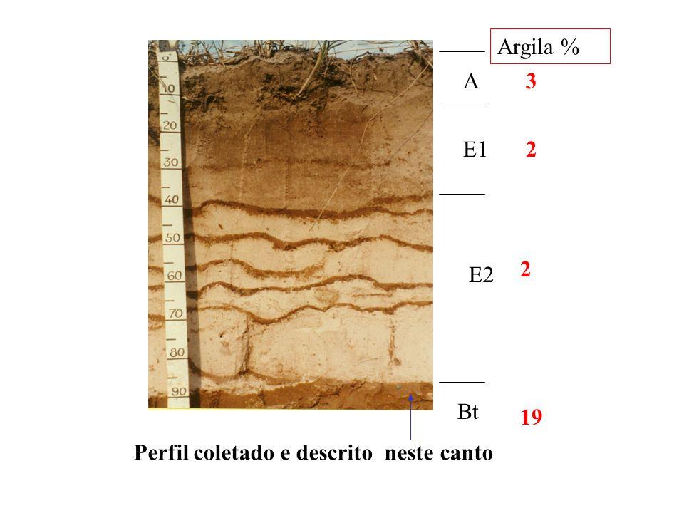 Argila % A 3 E1 2 2 E2 Bt 19 Perfil coletado e descrito neste canto