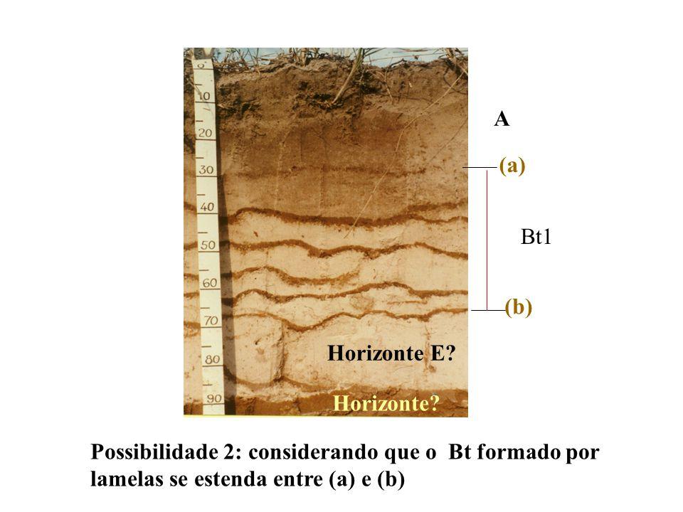 A (a) Bt1. (b) Horizonte E. Horizonte.