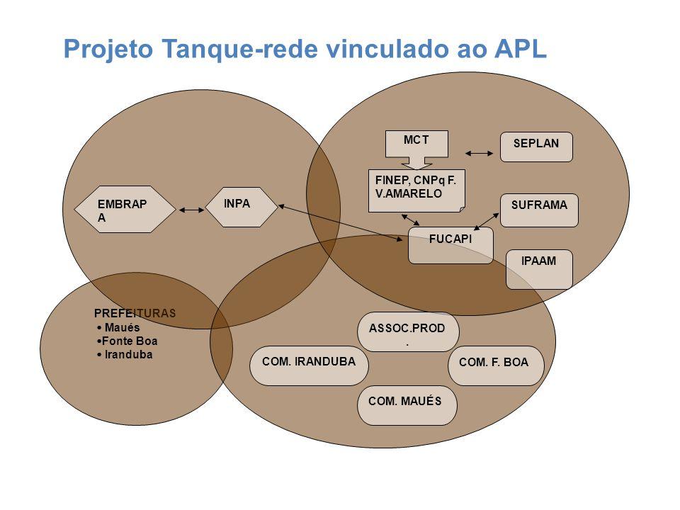 Projeto Tanque-rede vinculado ao APL