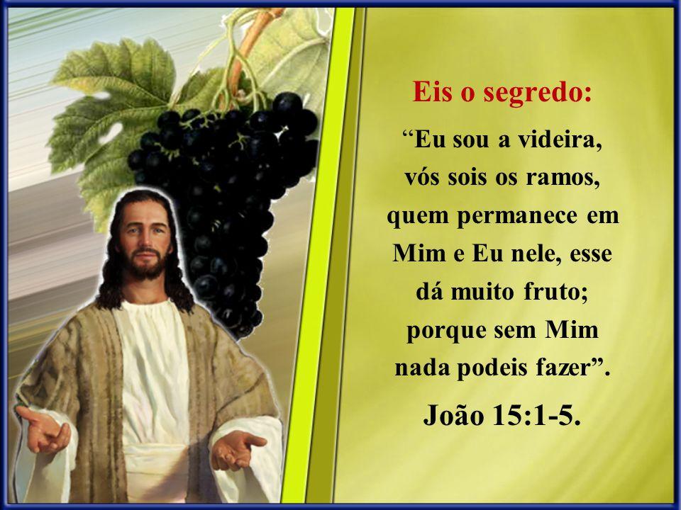 Eis o segredo: Eu sou a videira, vós sois os ramos, quem permanece em Mim e Eu nele, esse dá muito fruto; porque sem Mim nada podeis fazer .
