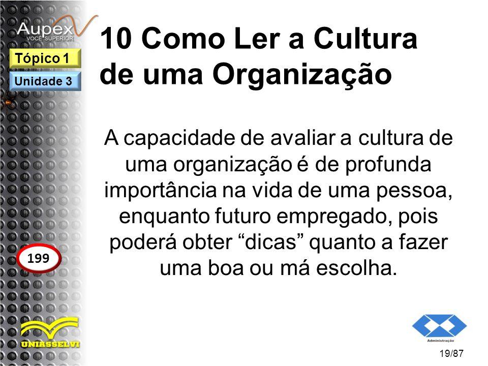 10 Como Ler a Cultura de uma Organização