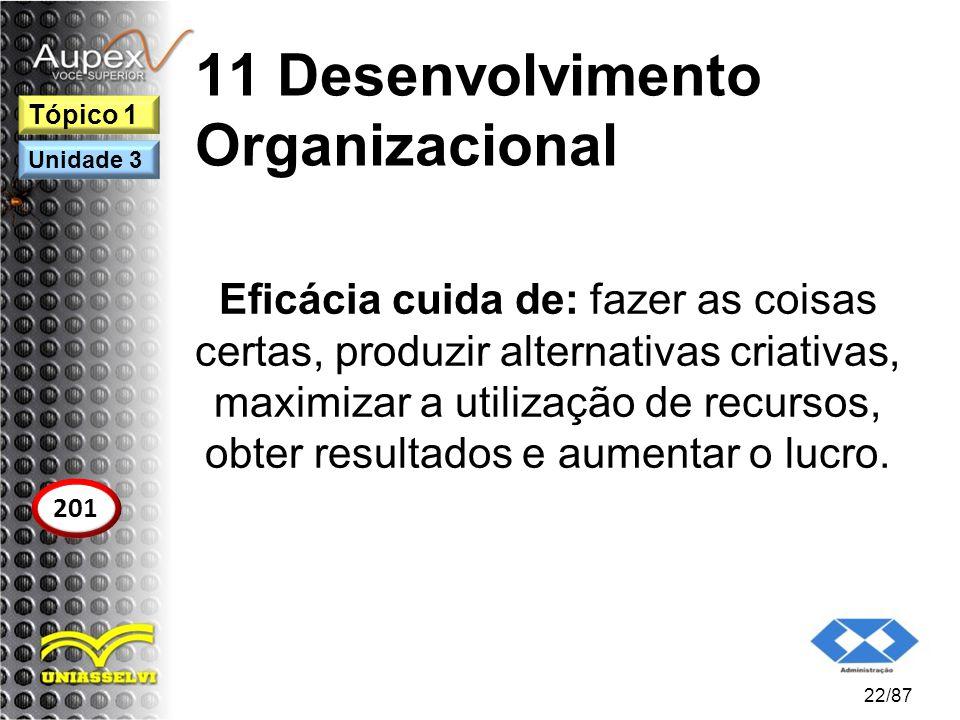 11 Desenvolvimento Organizacional