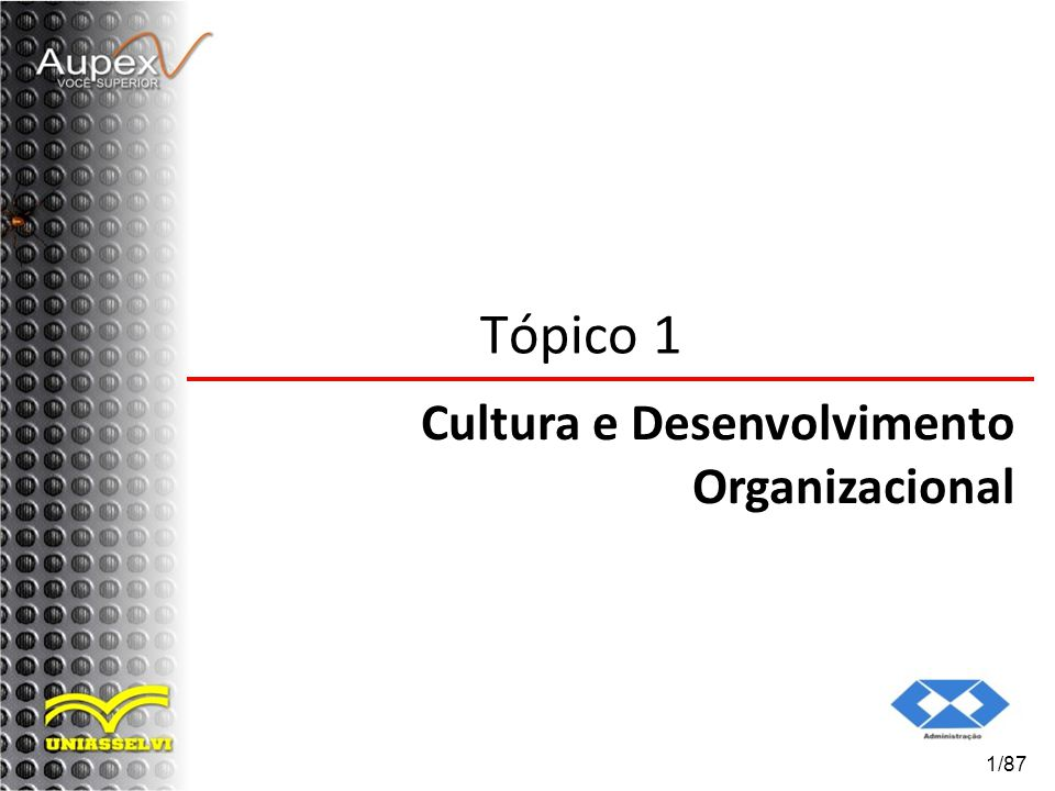 Tópico 1 Cultura e Desenvolvimento Organizacional 1/87
