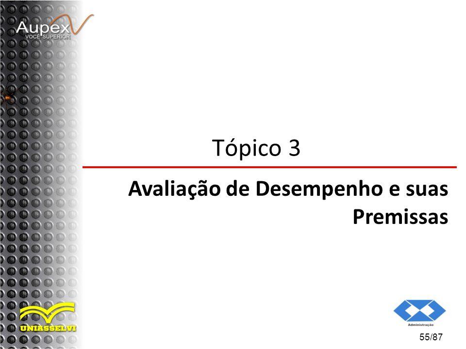 Tópico 3 Avaliação de Desempenho e suas Premissas 55/87