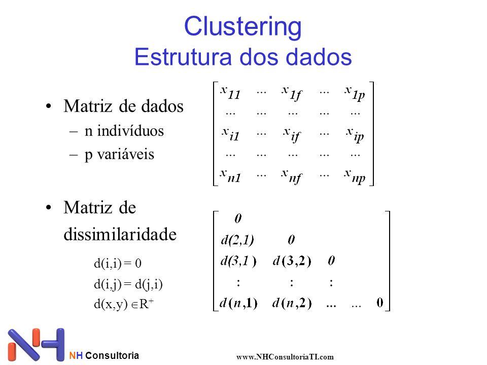 Clustering Estrutura dos dados