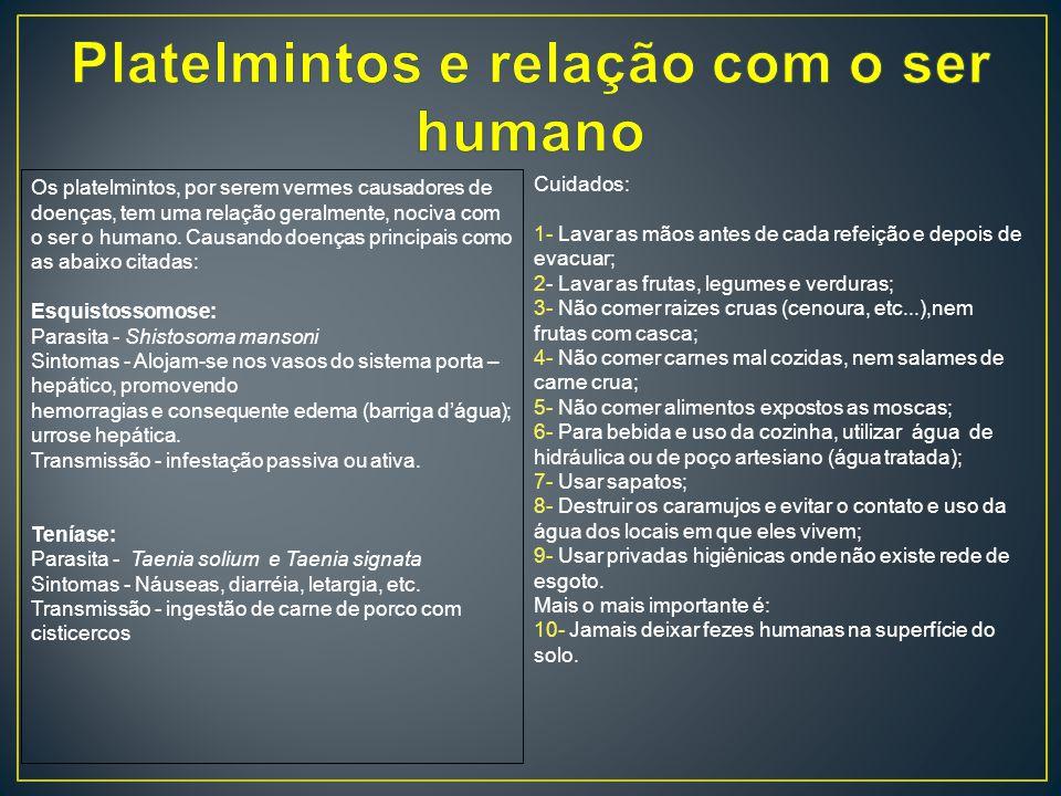 Platelmintos e relação com o ser humano