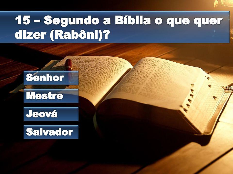 15 – Segundo a Bíblia o que quer dizer (Rabôni)