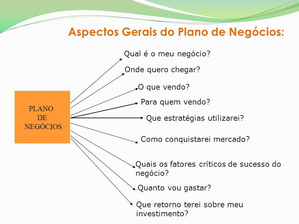 Aspectos Gerais do Plano de Negócios: