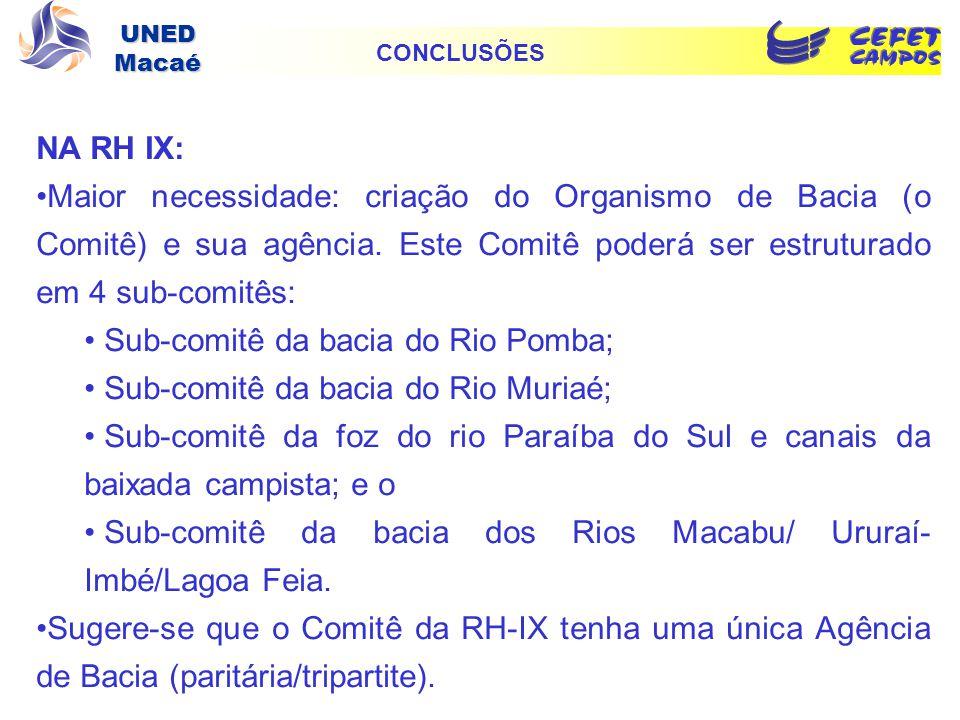 Sub-comitê da bacia do Rio Pomba; Sub-comitê da bacia do Rio Muriaé;