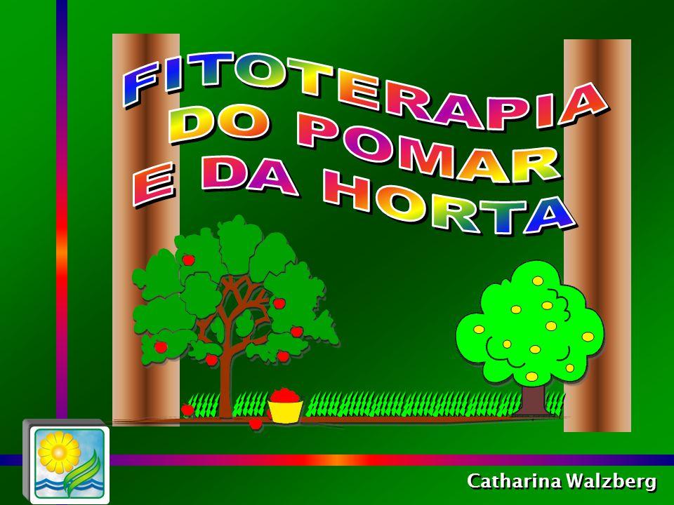 FITOTERAPIA DO POMAR E DA HORTA Catharina Walzberg