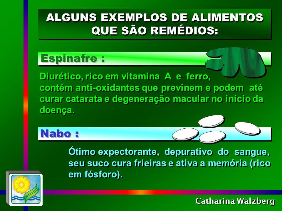 ALGUNS EXEMPLOS DE ALIMENTOS QUE SÃO REMÉDIOS: