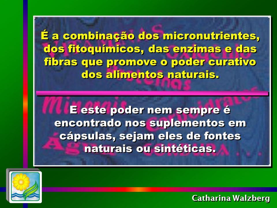 É a combinação dos micronutrientes, dos fitoquímicos, das enzimas e das fibras que promove o poder curativo dos alimentos naturais.