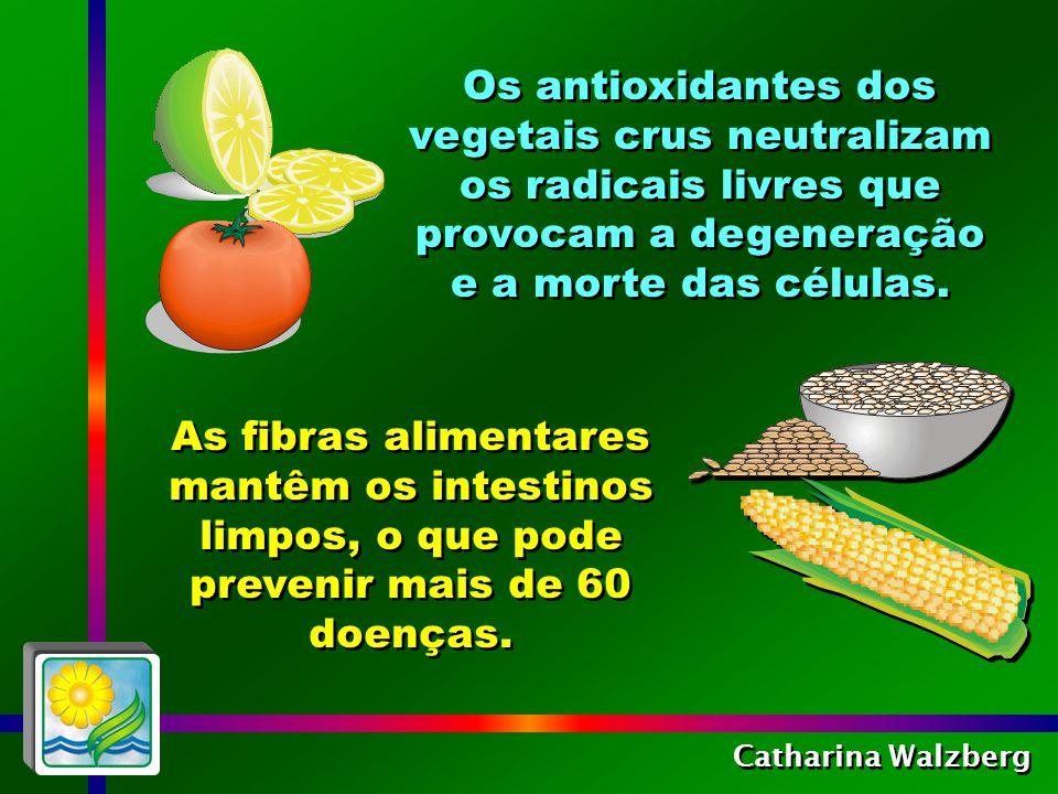 As fibras alimentares mantêm os intestinos limpos, o que pode