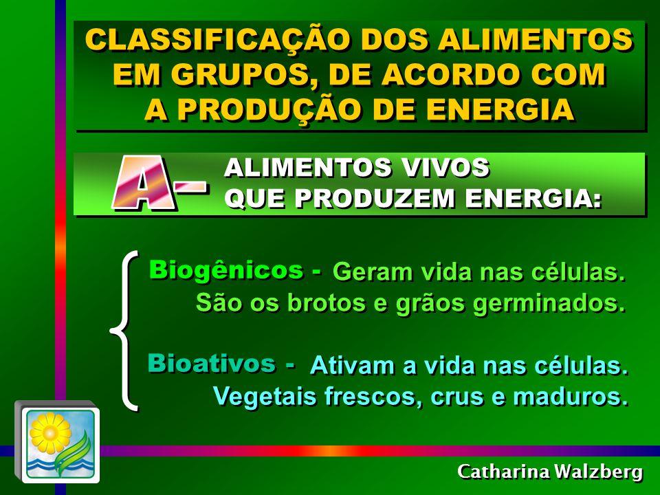 CLASSIFICAÇÃO DOS ALIMENTOS EM GRUPOS, DE ACORDO COM