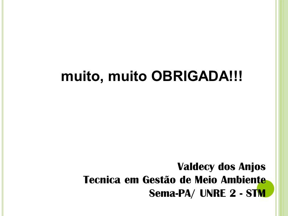 muito, muito OBRIGADA!!! Valdecy dos Anjos