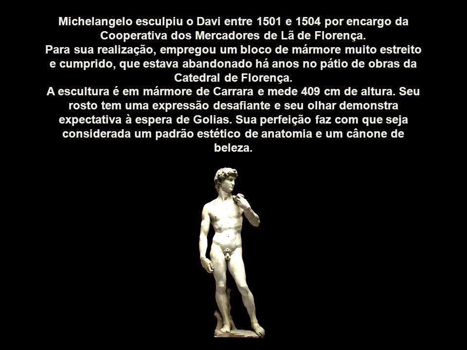 Michelangelo esculpiu o Davi entre 1501 e 1504 por encargo da Cooperativa dos Mercadores de Lã de Florença.