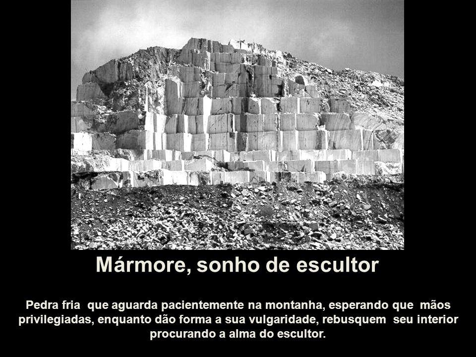 Mármore, sonho de escultor