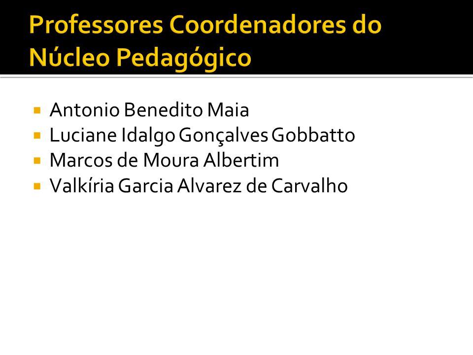 Professores Coordenadores do Núcleo Pedagógico