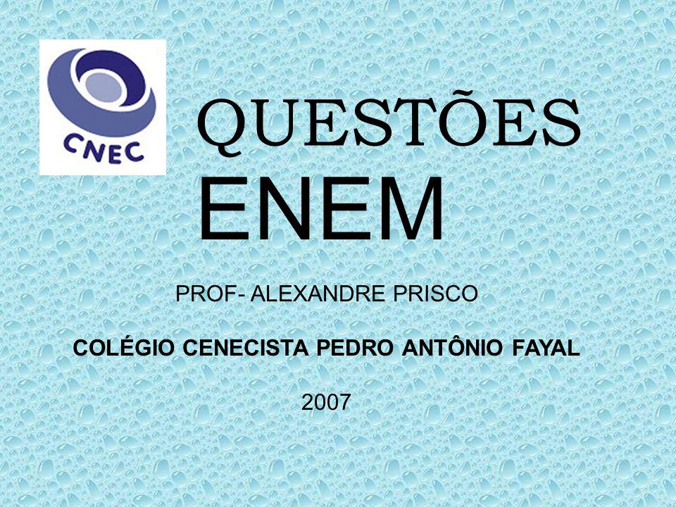 COLÉGIO CENECISTA PEDRO ANTÔNIO FAYAL