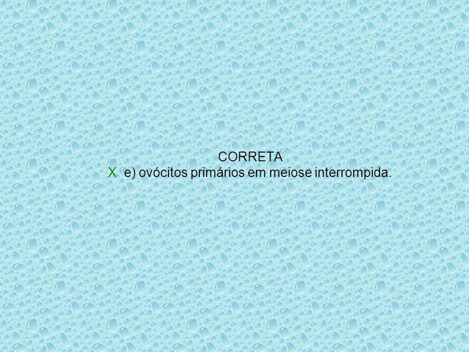 CORRETA X e) ovócitos primários em meiose interrompida.