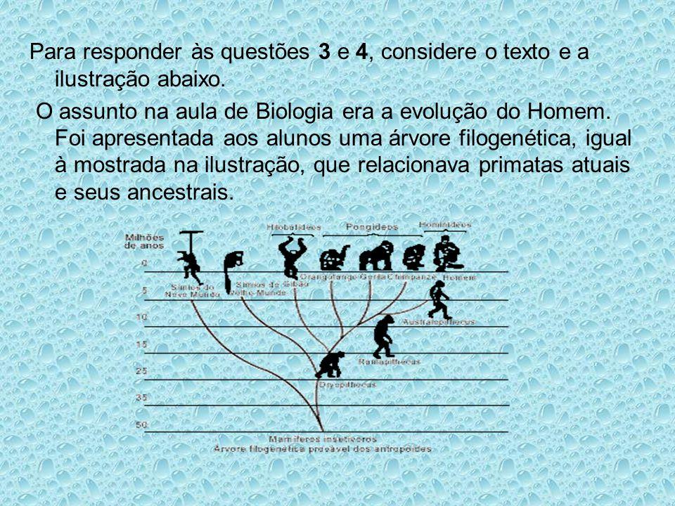 Para responder às questões 3 e 4, considere o texto e a ilustração abaixo.