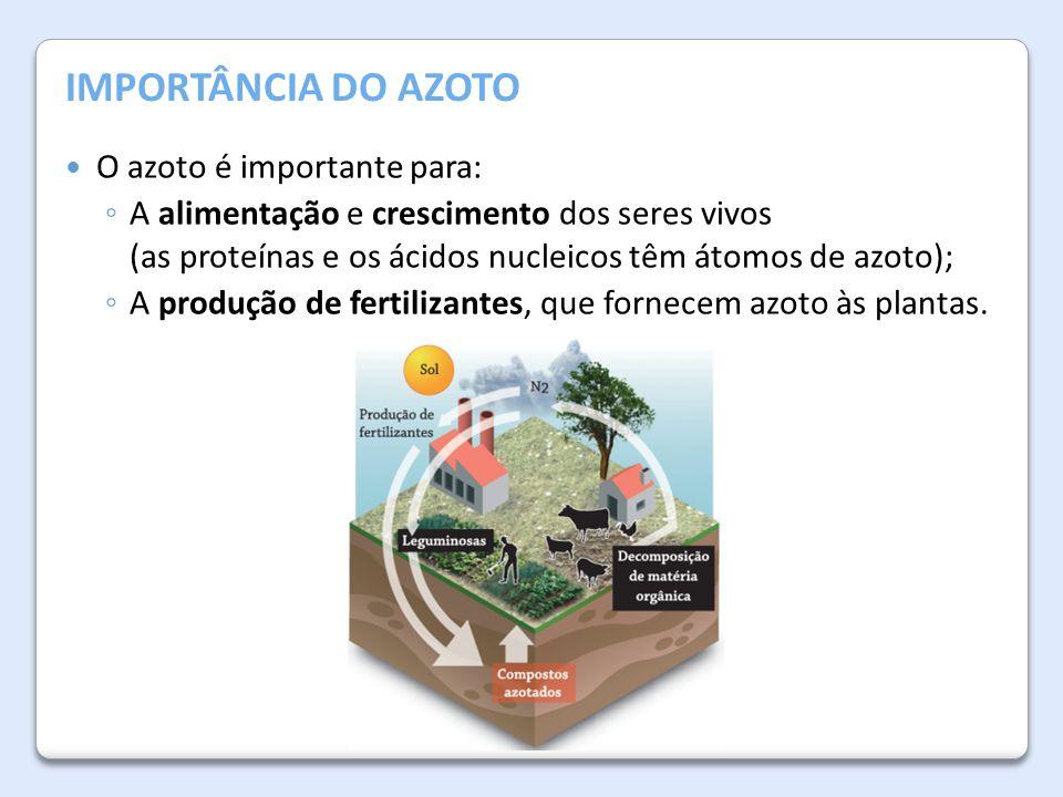 IMPORTÂNCIA DO AZOTO O azoto é importante para: