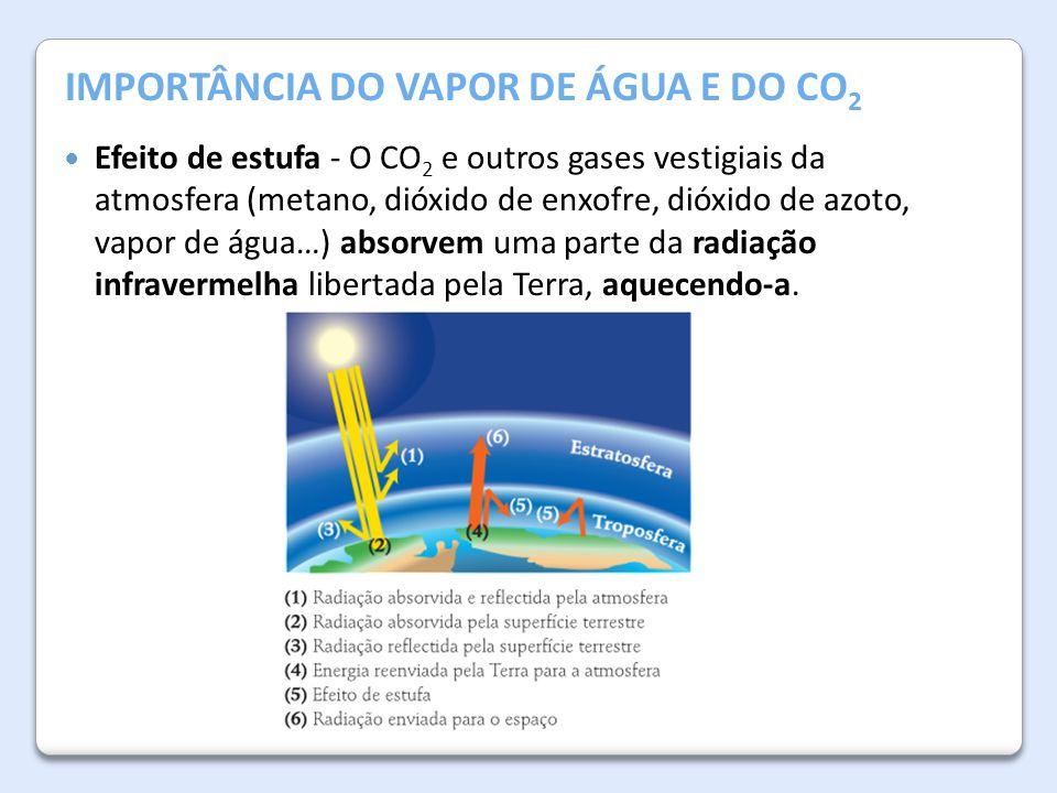 IMPORTÂNCIA DO VAPOR DE ÁGUA E DO CO2