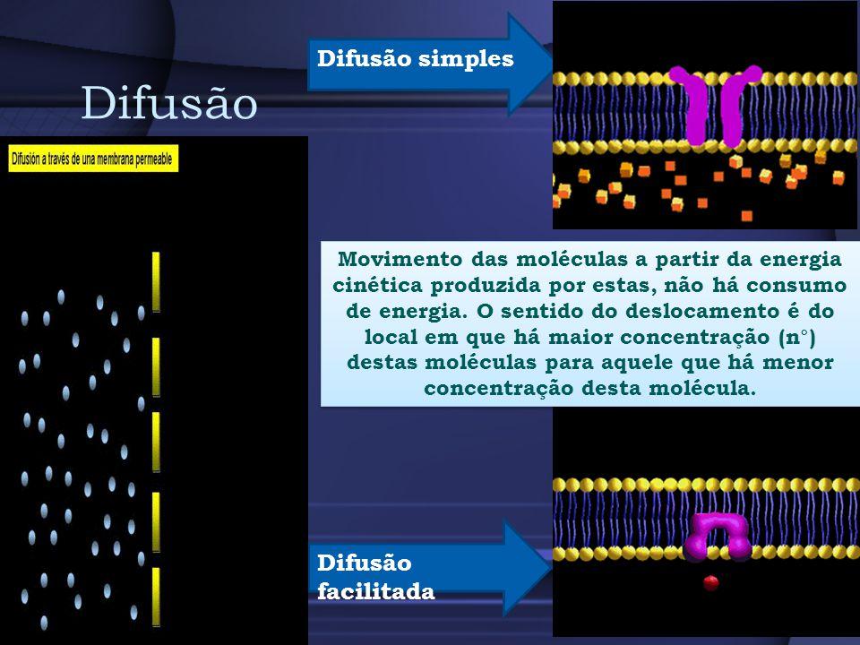Difusão Difusão simples Difusão facilitada
