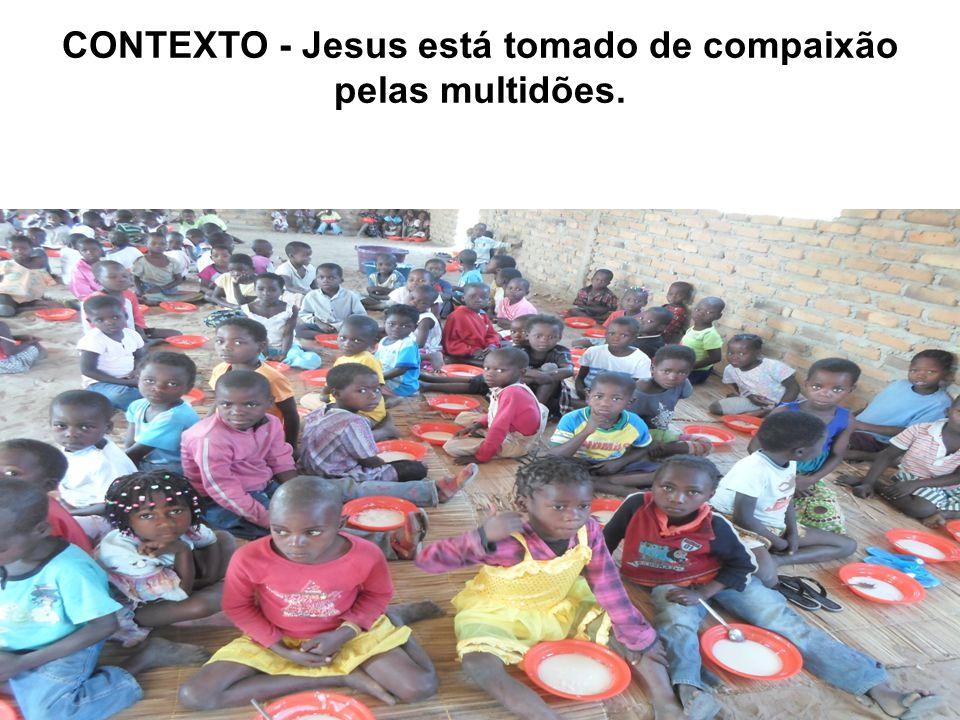 CONTEXTO - Jesus está tomado de compaixão pelas multidões.