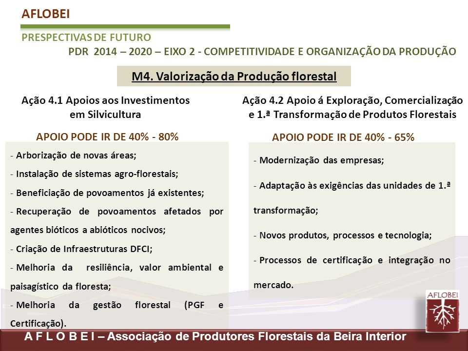AFLOBEI M4. Valorização da Produção florestal PRESPECTIVAS DE FUTURO