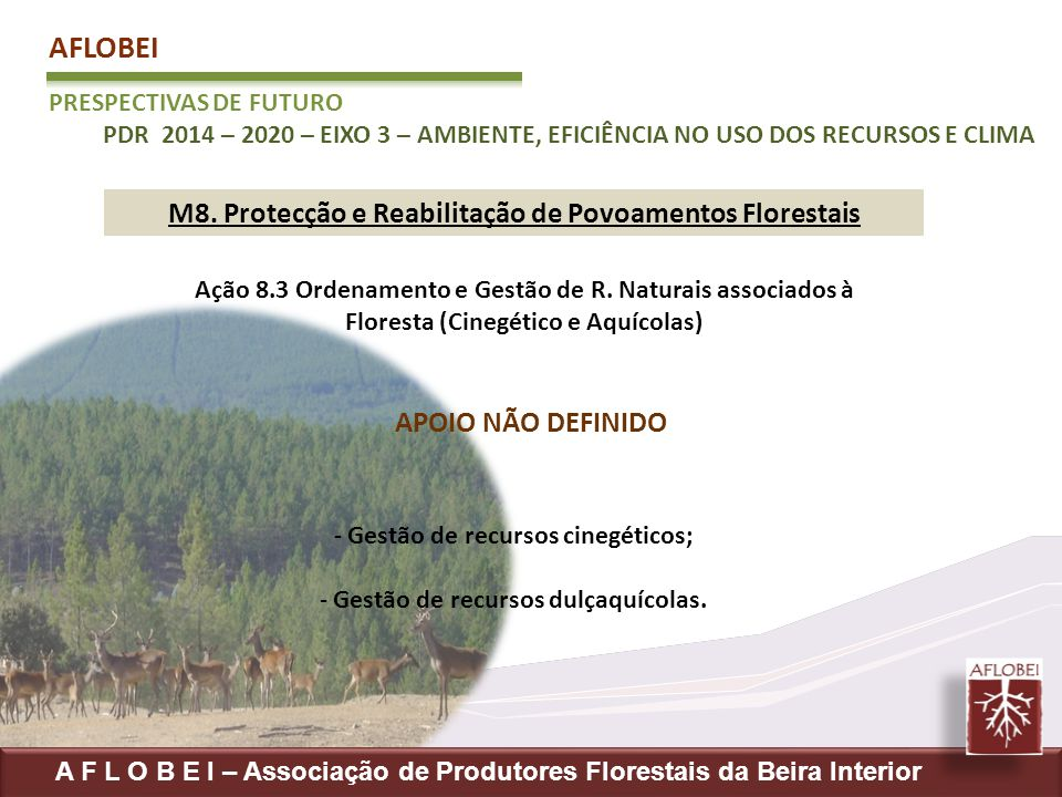 AFLOBEI M8. Protecção e Reabilitação de Povoamentos Florestais