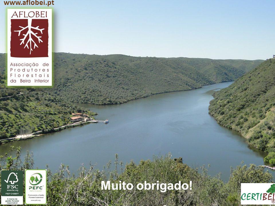 www.aflobei.pt Muito obrigado!