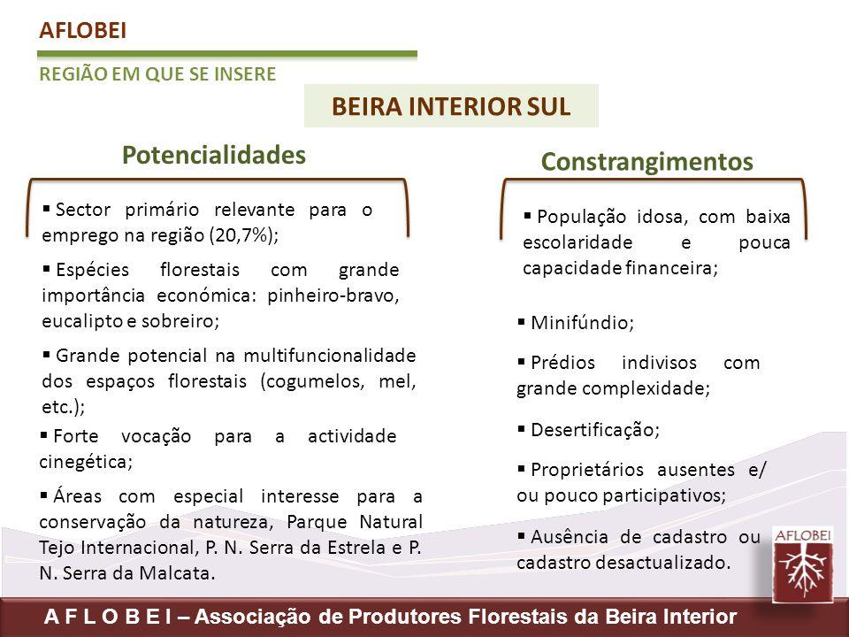 BEIRA INTERIOR SUL Potencialidades Constrangimentos