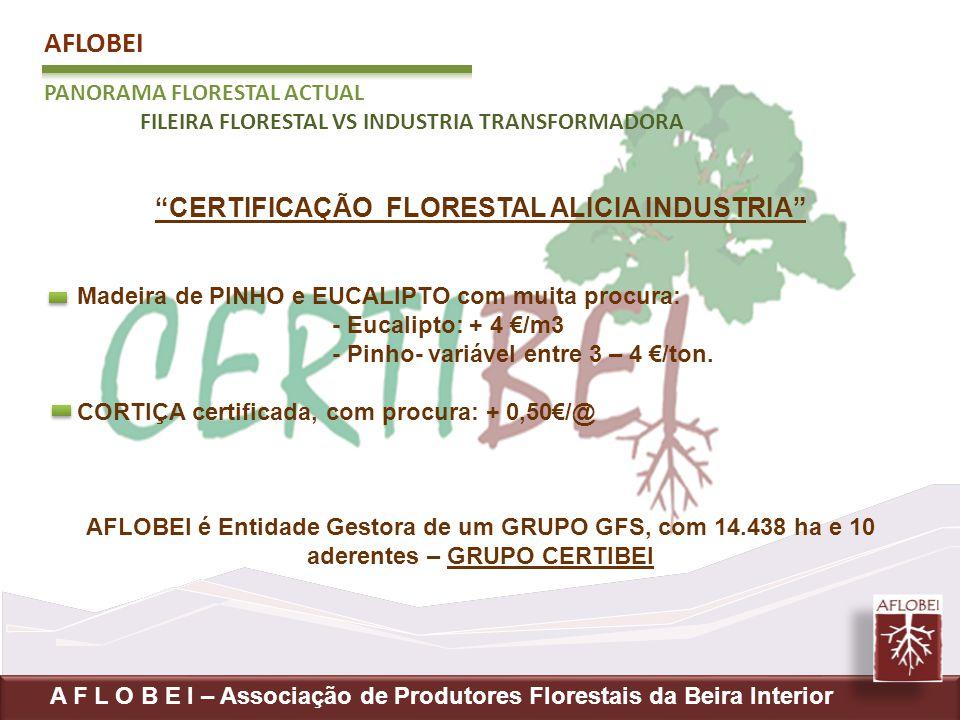 CERTIFICAÇÃO FLORESTAL ALICIA INDUSTRIA