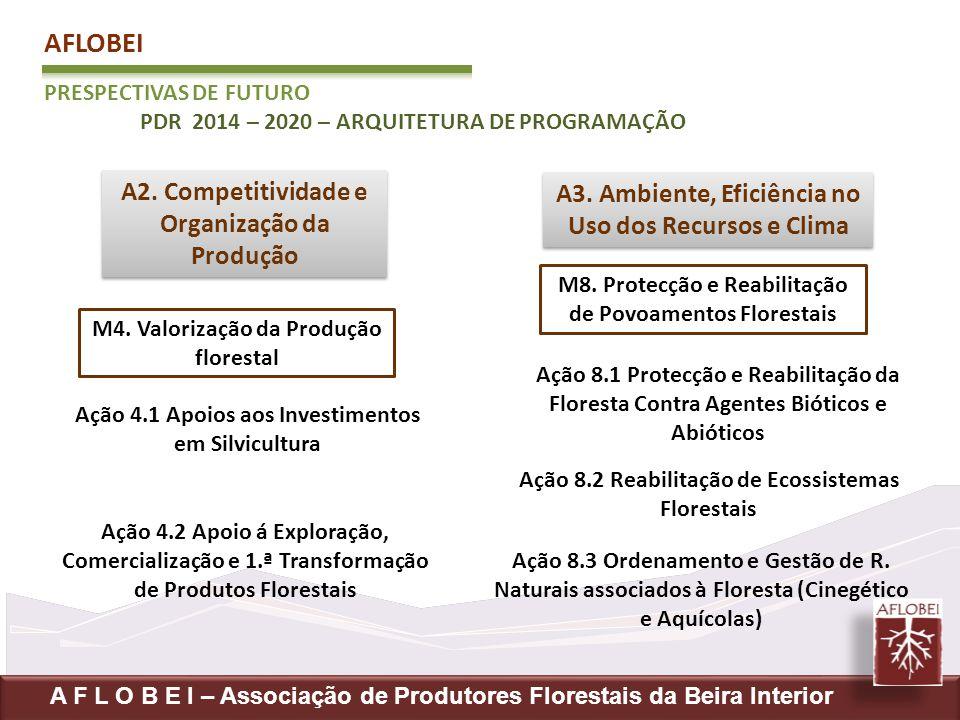 AFLOBEI A2. Competitividade e A3. Ambiente, Eficiência no