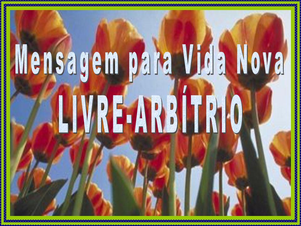Mensagem para Vida Nova