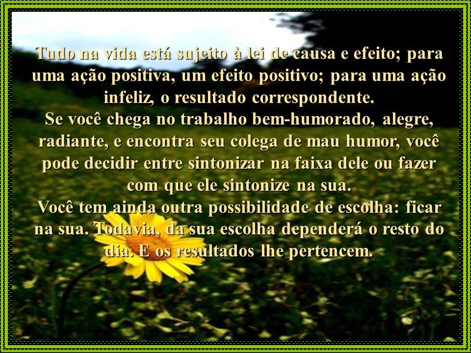 Tudo na vida está sujeito à lei de causa e efeito; para uma ação positiva, um efeito positivo; para uma ação infeliz, o resultado correspondente.