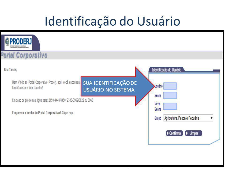 Identificação do Usuário