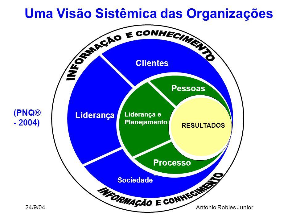 Uma Visão Sistêmica das Organizações