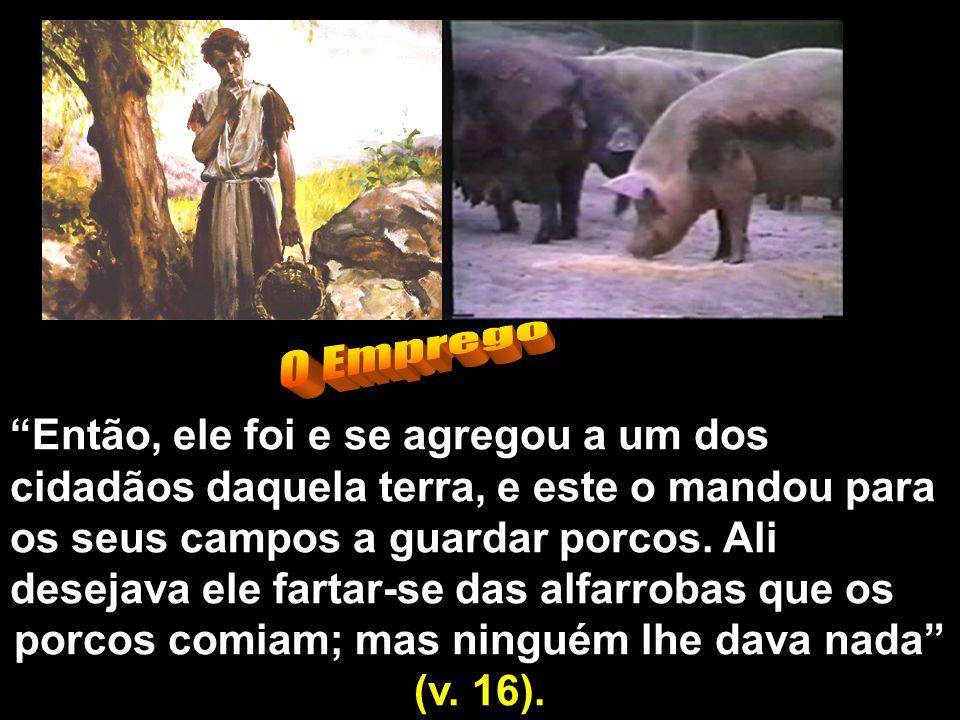 porcos comiam; mas ninguém lhe dava nada (v. 16).