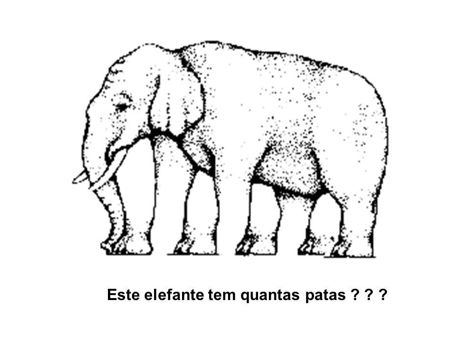 Este elefante tem quantas patas