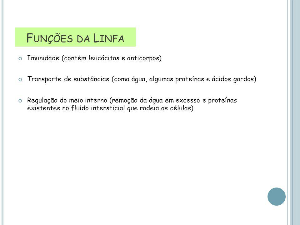 Funções da Linfa Imunidade (contém leucócitos e anticorpos)