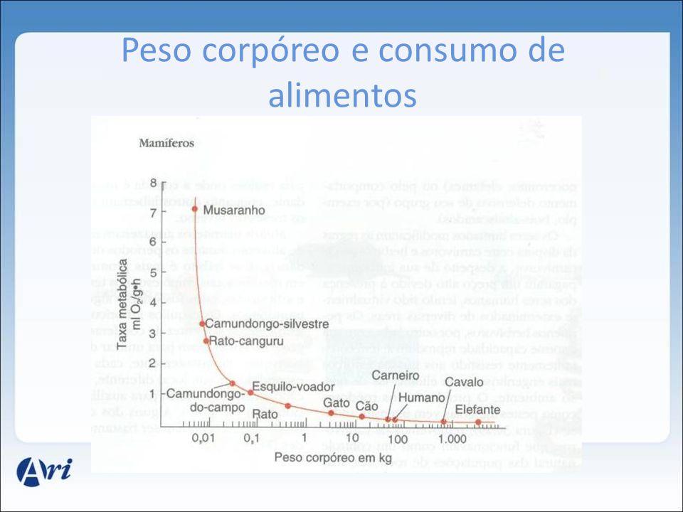 Peso corpóreo e consumo de alimentos