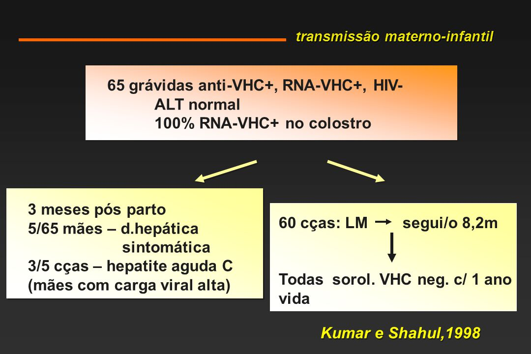 65 grávidas anti-VHC+, RNA-VHC+, HIV- ALT normal