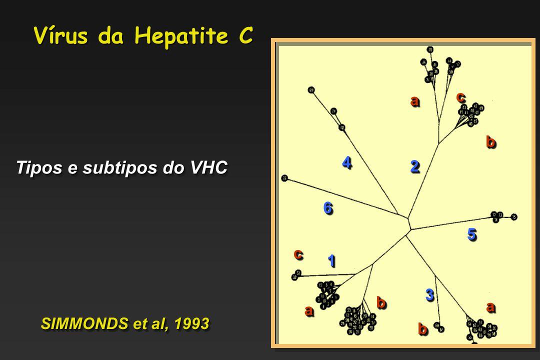 Vírus da Hepatite C Tipos e subtipos do VHC c a b 4 2 6 5 c 1 3 b a a