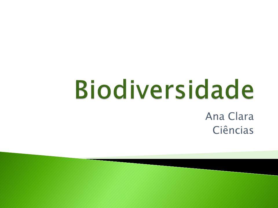 Biodiversidade Ana Clara Ciências