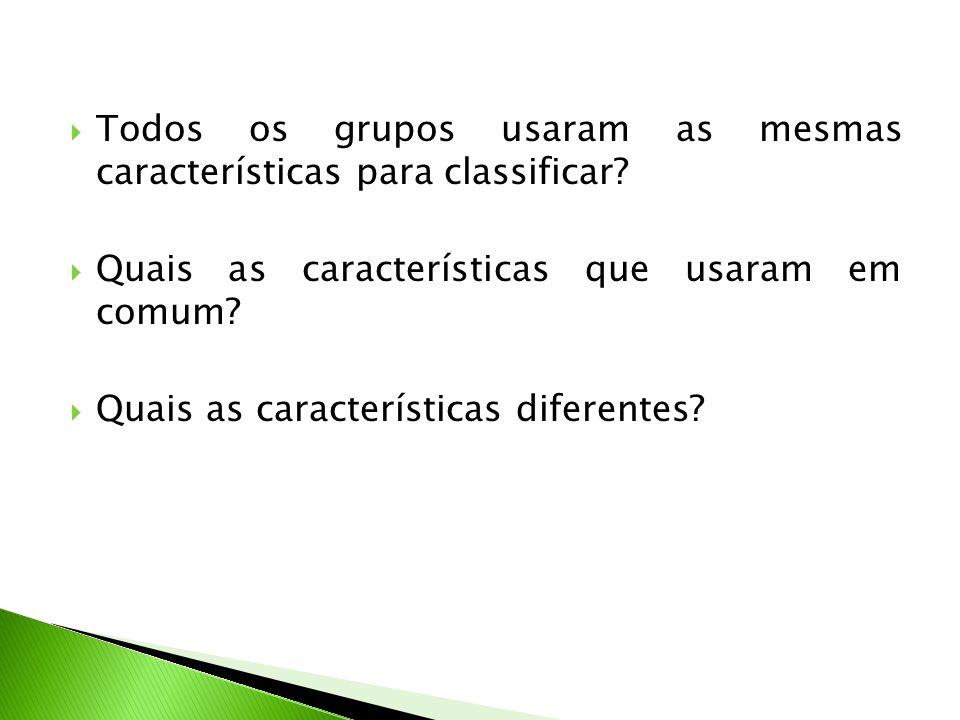 Todos os grupos usaram as mesmas características para classificar