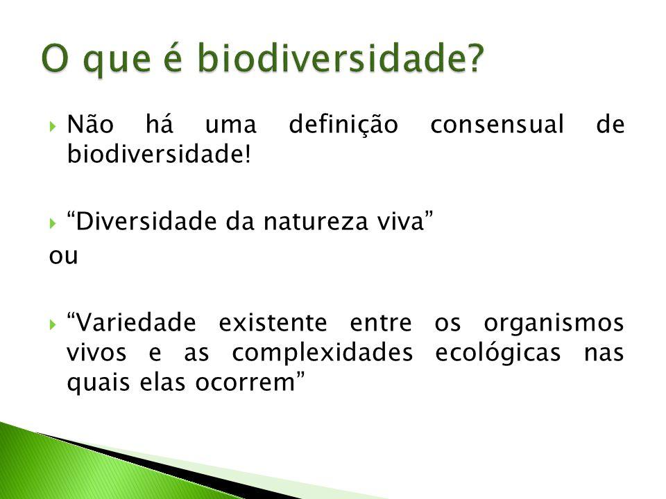 O que é biodiversidade Não há uma definição consensual de biodiversidade! Diversidade da natureza viva