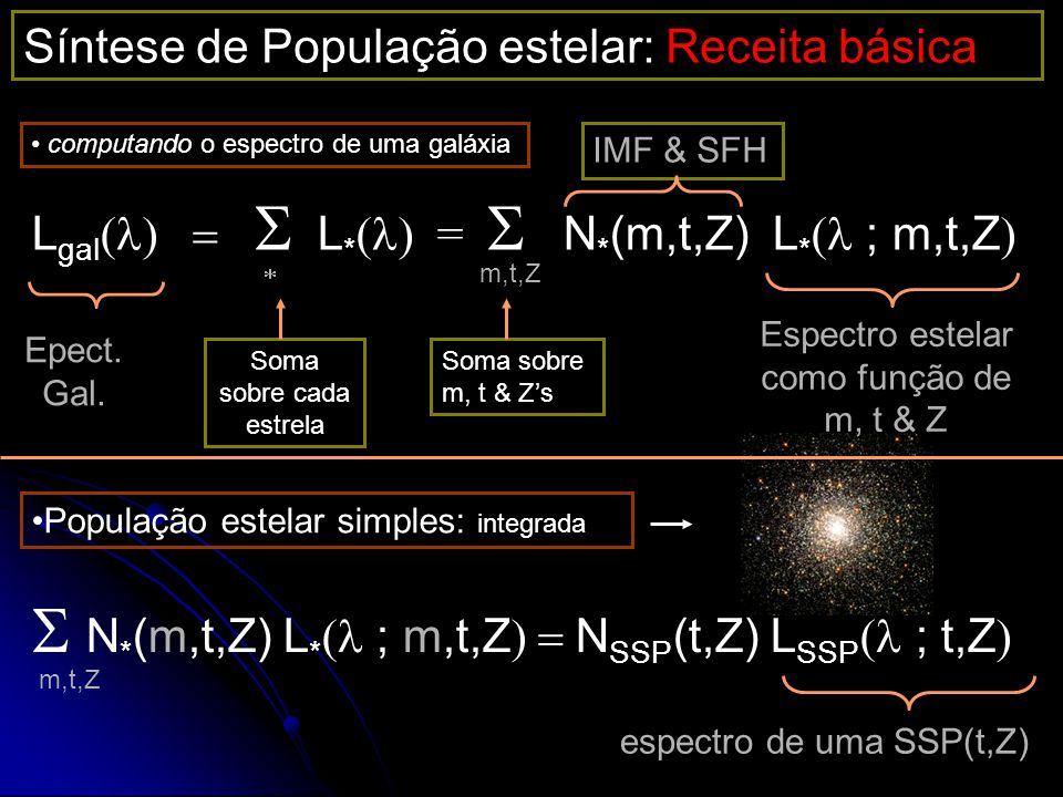 S N*(m,t,Z) L*(l ; m,t,Z) = NSSP(t,Z) LSSP(l ; t,Z)