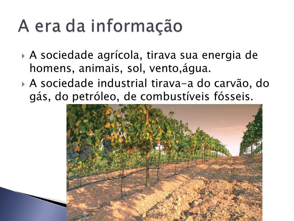 A era da informação A sociedade agrícola, tirava sua energia de homens, animais, sol, vento,água.
